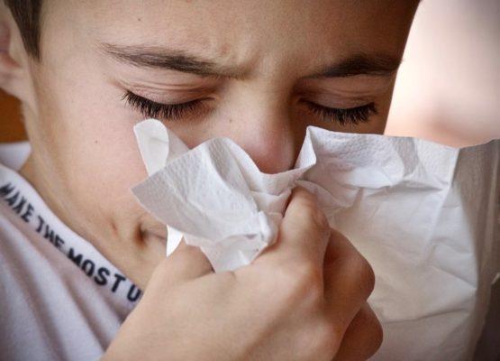 allergia-alle-graminaceee-simonetta-calamita-allergologa-pediatrica
