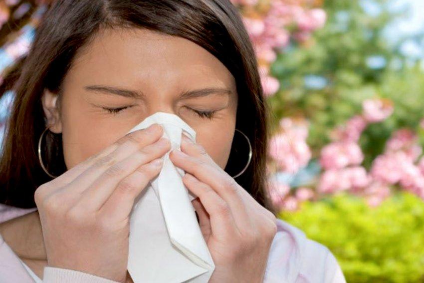 rinite-allergiaca-allergie-dott-ssa-simonetta-calamita-otorino-allergologa-pediatrica